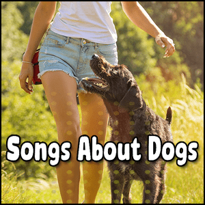 Best Songs About Dogs 2021